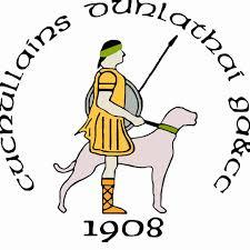 Dunloy Cuchullians
